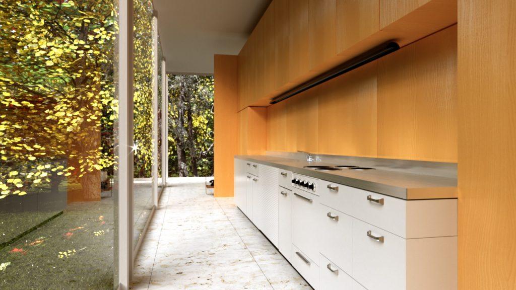cucina casa Farnsworth